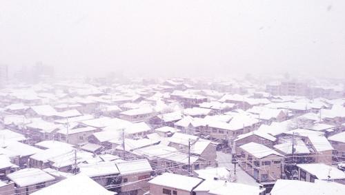 2013 東京 初雪 豪雪