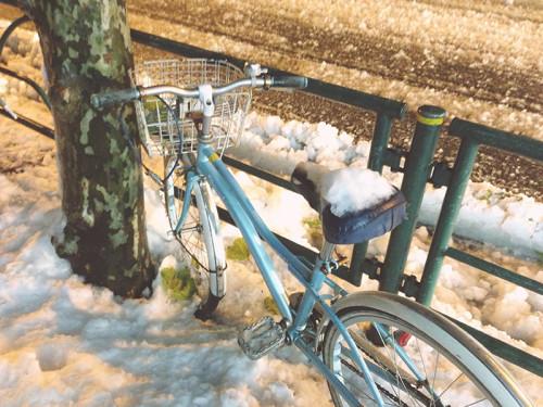 東京 初雪 平成25年