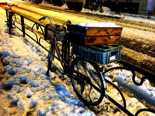 2013 1月東京 雪